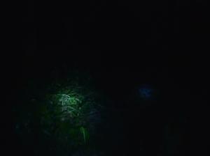 M4h01024_1_3