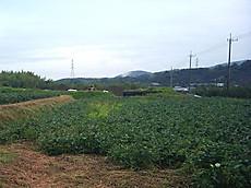 20121007_09_59_05